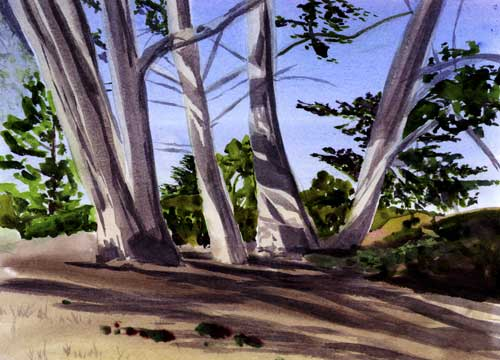 Watercolor of some Cypress Trees
